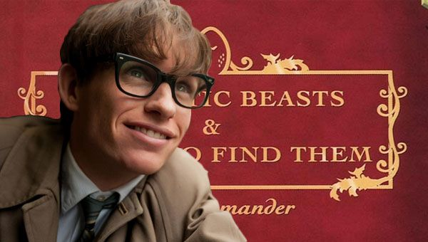 Harry Potter Fantastic Beasts and Where to Find Them Eddie Redmayne